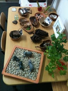 Sustainable Childcare Resources: Play Based Learning cont...