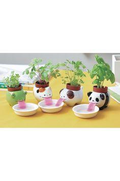 Frog & Panda Self Watering Peropons - Set of 2 by Noted on @HauteLook