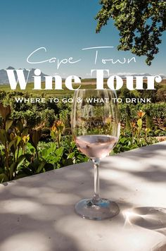 Cape Town Wine Tour: Where to go and what to drink | Midnight Blue Elephant