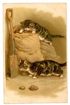 Helena Maguire vintage cat postcard tabby cats hunt mouse behind spade & potatoes #VINTAGEPOSTCARD. One in a series of five; the others are included in this board.