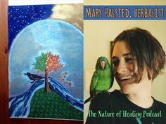 The History and Energetics of Herbalism with Herbalist Mary Halsted, Episode University College Dublin, True Vision, Spiritual Warrior, Deep Meaning, Self Healing, Healer, Stay Tuned, Did You Know, Meant To Be