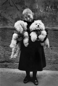 Vintage photo -- cute little old lady and her two Poodles.