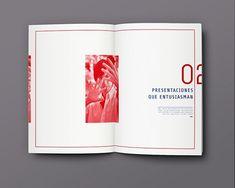 Revista (Fascículo) - Steve Jobs on Behance #simplelayout