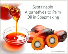 If you don& want to use palm oil but still want to make soap, there are some good alternatives. If you do use it we recommend sustainably-sourced palm oil. Homemade Beauty Products, Diy Cleaning Products, Bath Products, Palm Oil Benefits, Health Benefits, Shampoo Alternative, Bath Melts, Cool Things To Make, How To Make