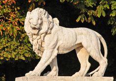 Lion statue at Jardin du Luxembourg Paris France via Mbell1975