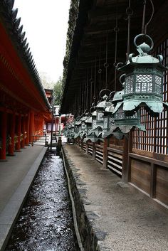 Japanese Lantern - i always use this photo for perspectice drawing classes.