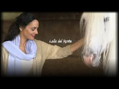 Chambres d hotes Castelmau au Lavandou - YouTube Communication Animale, France 5, Flylady, Animal Rights, Intuition, Animal Pictures, Einstein, Best Friends, The Unit