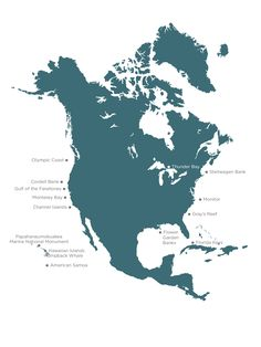 Did you know? 100 years after America's first National Park was created, National Marine Sanctuaries were established!