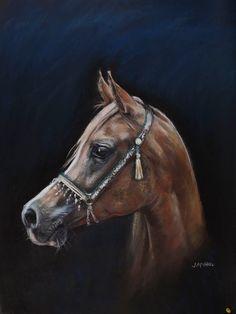 beautiful giclee print of a chestnut arabian horse called ' Savannah'