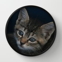 Buy 1 of 8 DPG150829a by CSteenArt as a high quality Wall Clock  This kitten was rescued from certain death by one of my besties. I was able to photograph this cutie and his siblings during transport to the shelter that agreed to take them, treat them and find homes for them. I've drastically reduced my take on this collection of prints and encourage anyone who buys them to make a donation to magi-catrescue.org to help over the cost of their care and placement.