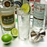 The Five Biggest Gin Myths