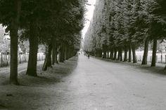 Versailles, France @heartofapoetphotography