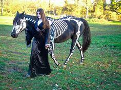 very cool idea   Halloween Photo Contest winner - Logan Daily News: Featured: halloween, contest, skeleton horse, costume, winner