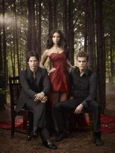 Vampire Diaries Poster #02 Cast 24inx36in