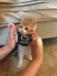 Go Max!!!  Go Penn State!!!