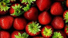 eper – Google Kereső Dehydrated Strawberries, Dried Strawberries, Easy Weight Loss, Healthy Weight Loss, Best Diy Face Mask, Fruits Images, Fruit Photography, Strawberry Plants, Agaves