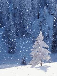 I'M DREAMING OF A WHITE CHRISTMAS! Press on picture & the snow actually falls!!!