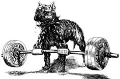 The Westside-Barbell Conjugate Method: A Users Guide