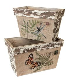 Take a look at this Dragonfly & Butterfly Container Set by Melrose on #zulily today! $30 !!