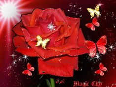 Blingee Graphics Roses Glitter | rose with red and gold butterflies and glitter tags butterflies rose ...