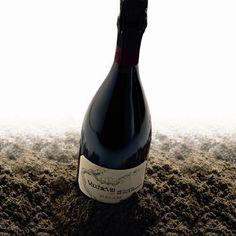 Un vino che va oltre il prosecco!    Valdobbiadene Prosecco Superiore Docg Brut Vecchie Viti Millesimato 2010, Ruggeri - Vini Notizie.it