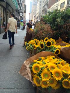 Sunflowers on a Manhattan street: Flower District in New York, NY