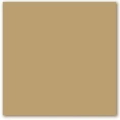 Willow springs ppg1007 1 from ppg pittsburgh paints for Best neutral brown paint color