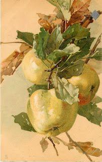 Коллекция картинок: Антикварные открытки от Cathеrine Klein.Фруктово-ягодное