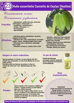 Fantastic Aromatherapy Tips And Strategies For easy diy Health And Wellbeing, Health And Nutrition, Cellulite, Medicinal Herbs, Reflexology, Acupressure, Tea Tree, Doterra, Natural Remedies