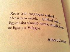 Albert Camus, Tattoo Quotes, Love, Books, Amor, Libros, Book, Book Illustrations, Inspiration Tattoos