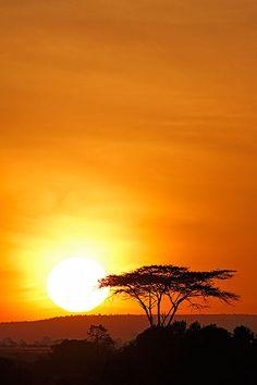 Sweetwater Kenya