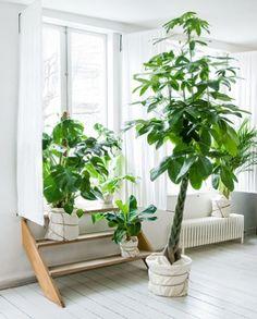 Green by Femke Pastijn .   Via StilInspiration .