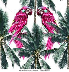 Parrots, exotic birds, palm trees, beautiful seamless vector floral tropical pattern background