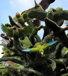 Détail d'une sculpture botanique représentant l'envol d'oiseaux multicolors