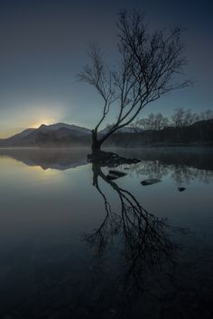 First Light: Photo by Photographer Jed Pearson -