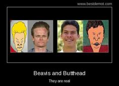 The real beavis and butthead!