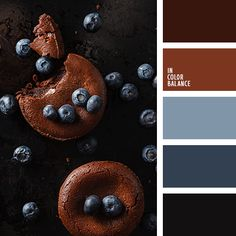 Very impressive and noble palette. An original and unexpected combination of gray-blue, blueberry, brown and dark brown. They are well contrasted with each other, emphasizing the beneficial virtues. This range is suitable for spacious rooms that overlook the sunny side. These paints are cooled and neutralized by excessive heat.