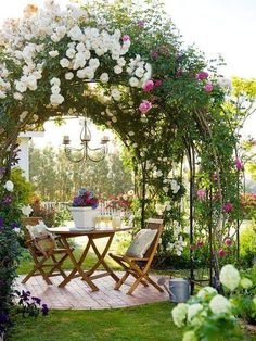 climbing roses on trellis over table and chairs.