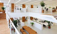 Vitals Office Interior BY: I Love Architecture