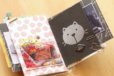 Cat Mini Album Cariilup