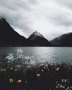 Nature sur Pinterest