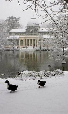 Crystal Palace in the Snow, Retiro Park, Madrid, Spain (by Marco Cristofori) mi lugar favorito