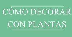 Cómo decorar con plantas, consejos, decoración, primavera, colaboración,  http://www.decoracionpatriblanco.es/2017/03/como-decorar-con-plantas.html