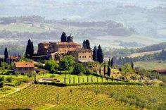 Tuscany, Italy (spending most of the time at a vineyard...writing *sigh*)