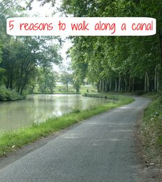 The Midi Canal passes through some of the prettiest countryside in France. It can be cycled, cruised by boat but here are 5 reasons to walk!