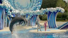 #AVolarConAlmar l [VIDEO OFICIAL]: Orlando Vacation Travel Guide | Expedia.  [Para más información por favor ingrese en nuestro sitio web]: > http://almarviajes.com.ar/Contact  Consúltenos por reuniones informativas personalizadas, las mejores cadenas hoteleras, tickets, traslados y asistencia al viajero.  Equipo de Almar Viajes, Amigos de Viajes. EVyT - LEG 15220 - RESO 1040 / 2012