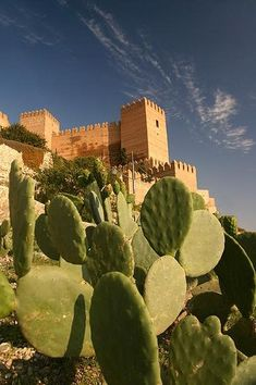 The Alcazaba of Almería can be seen from any part of the city and it is the biggest of the citadels built by the Arabs in Spain. Spain Holidays, Seville, Spain Travel, Malaga, Granada, Dream Life, Best Hotels, Trip Planning, Tourism