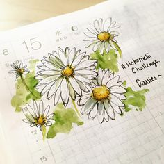 Hello daisies~ they are soooo pretty in the summer time~ @esthermolinart I miss the daisies in your neighborhood😍😍🌿#doodle #doodleaday #draw #ほぼ日チャレンジ #ほぼ日挑戰 #hobonichichallenge #hobonichitecho #urbanjournaling