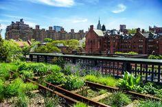 High Line - Un parque creado sobre una antigua vía ferroviaria   Nueva York #newyork #travel #viajar #turismo #sights www.vivenuevayork.es