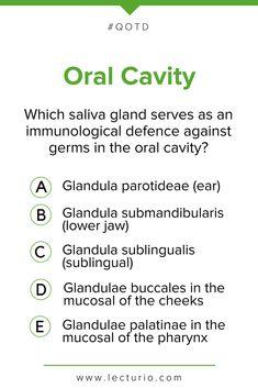 24 best question of the day qotd, medicine, qbank, quiz imagesoral cavity \u0026 gastrointestinal tract